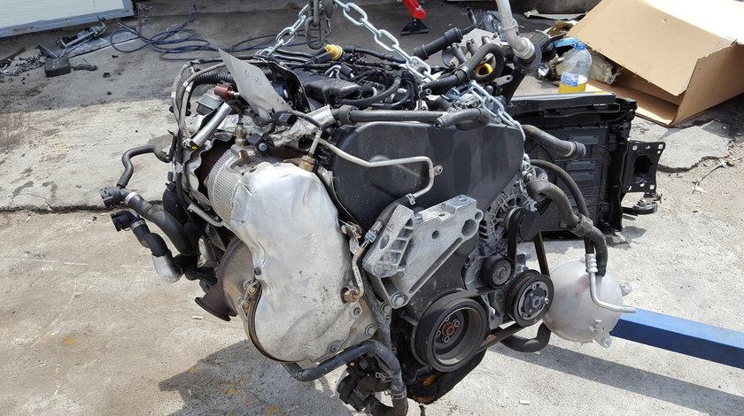 Motor VW 1.6 TDI CLHB 90 CP