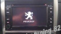 Navigatie Tti 8917i Dedicata Peugeot 307 INTERNET ...