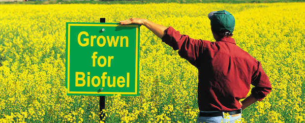 Noua revolutie in domeniul uleiurilor: lubrifianti specializati pe bio-carburanti. Ce parere ai?