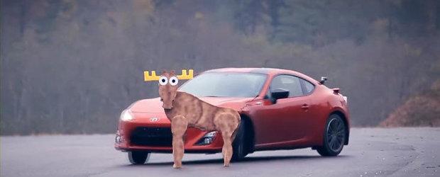 Noua Toyota GT-86 'pica' testul elanului