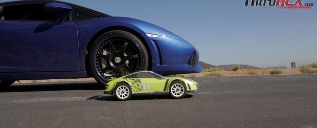 O masina cu radiocomanda se intrece cu un Lamborghini de 550 cp