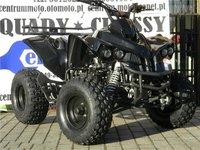 Oferta Verii: ATV ReneGade Vokun 125cmc