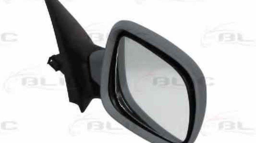 Oglinda exterioara SKODA FABIA Praktik BLIC 5402-04-1129522P