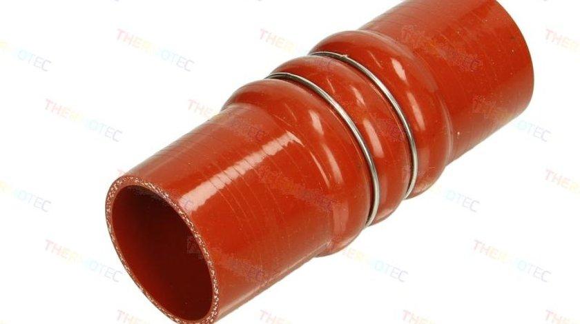 Palnie filtru de aer CITROËN BERLINGO nadwozie pe³ne B9 Producator THERMOTEC DCC014TT