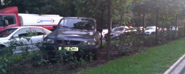 Parcarea pe spatiile verzi - O noua moda in randul soferilor?
