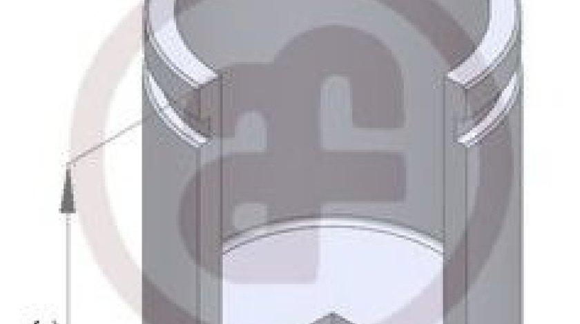 Piston, etrier frana BMW Seria 3 (E90) (2005 - 2011) AUTOFREN SEINSA D02597 produs NOU