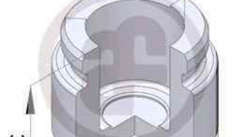 Piston, etrier frana MERCEDES-BENZ C-CLASS (W203) AUTOFREN SEINSA D025229