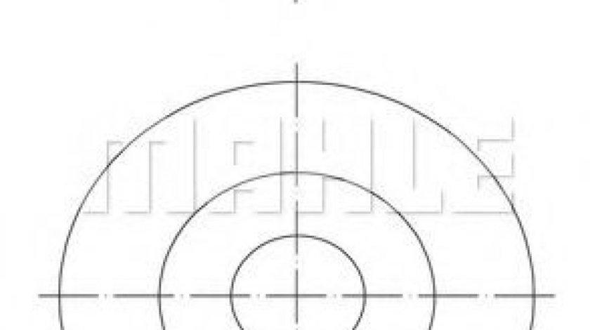 Piston PEUGEOT BOXER caroserie (2006 - 2016) MAHLE ORIGINAL 016 07 00 produs NOU