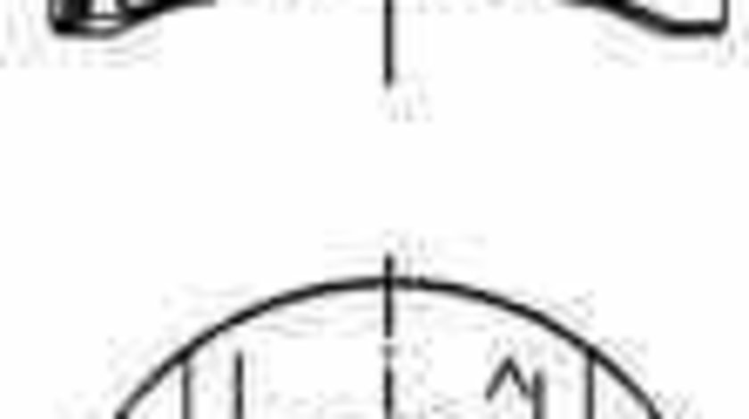Piston RENAULT TRAFIC II platou / sasiu EL KOLBENSCHMIDT 40262600
