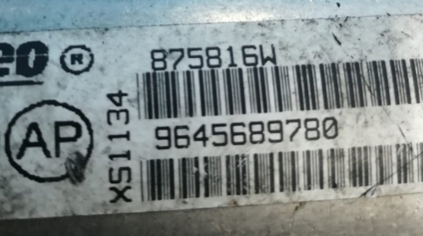Racitor gaze Peugeot 407 2.0 HDI