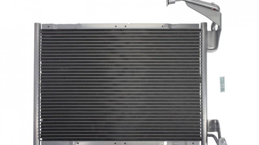 Radiator aer conditionat Ford Tourneo Connect (2002-2013) #4 1819980