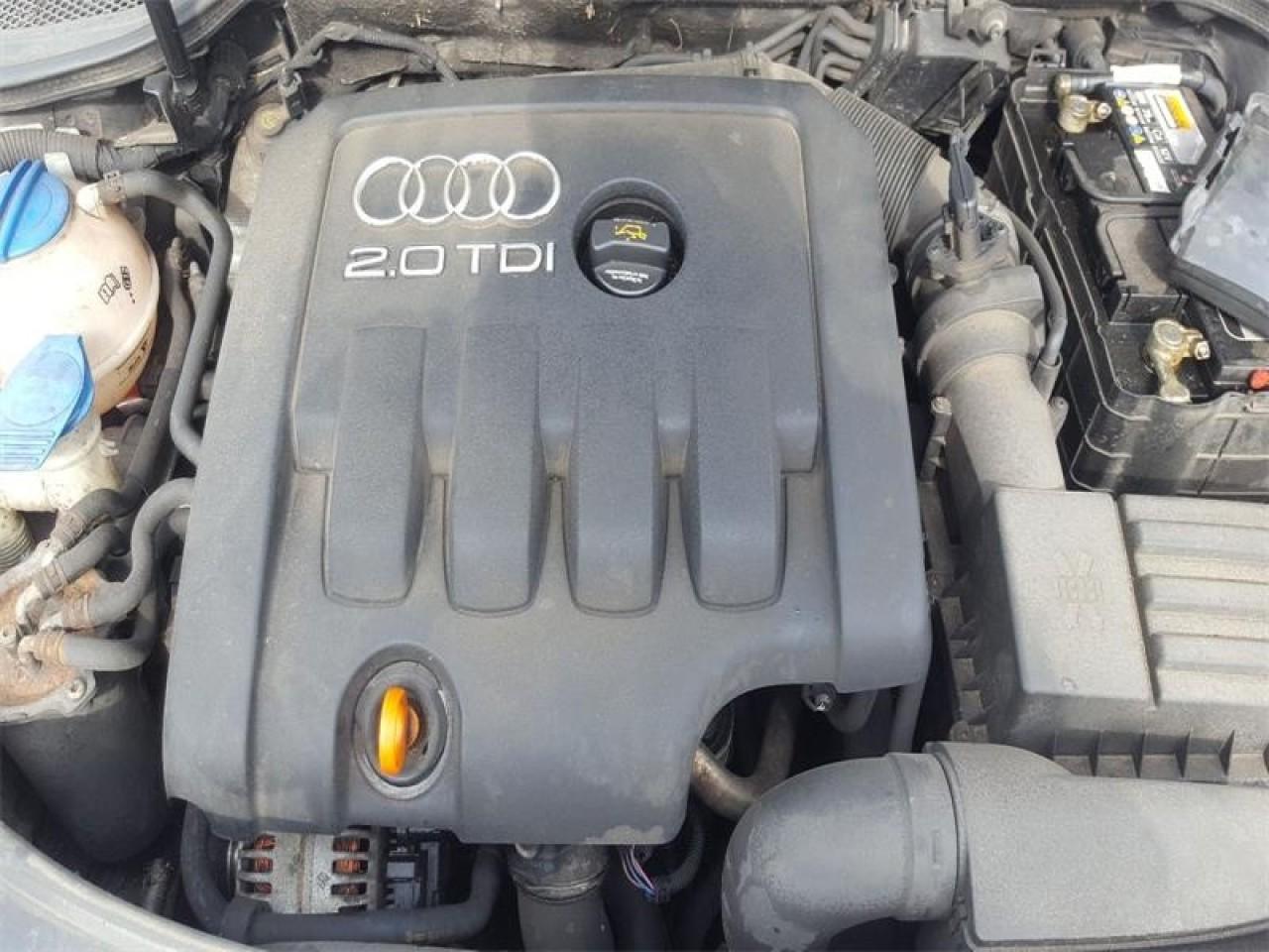Radiator apa Audi A3 8P 2006 Hatchback 2.0 TDi