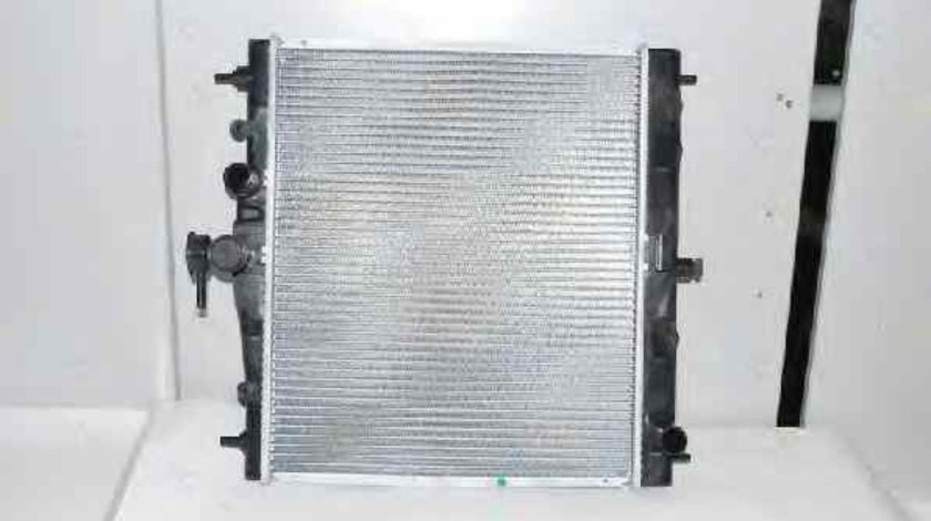 Radiator apa racire motor RENAULT CLIO III BR0/1 CR0/1 THERMOTEC D71011TT