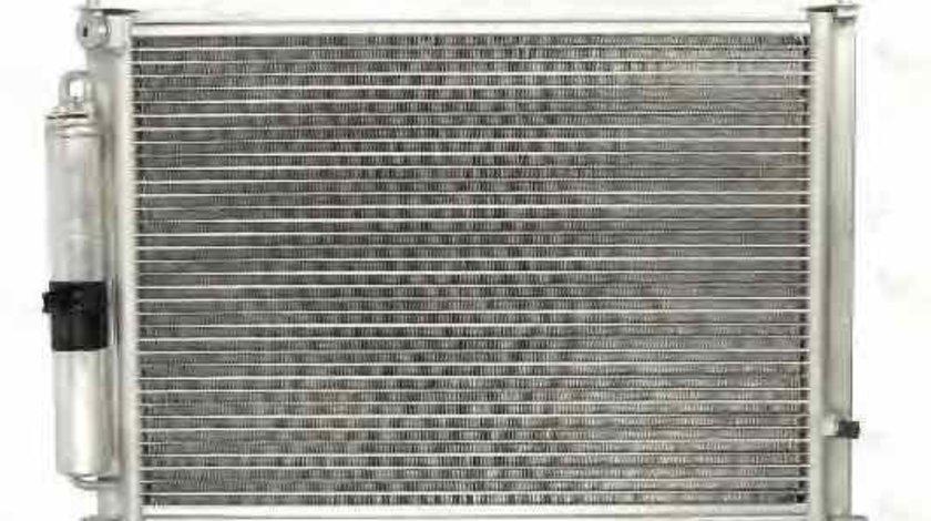 Radiator Clima Aer Conditionat RENAULT CLIO III BR0/1 CR0/1 Producator THERMOTEC KTT110251