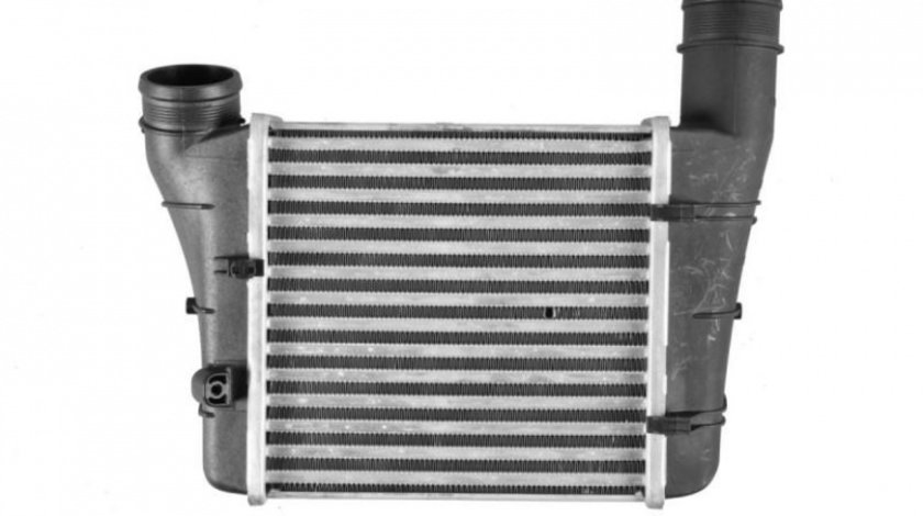 Radiator intercooler Audi A4 (2004-2008) [8EC, B7] #2 07103105