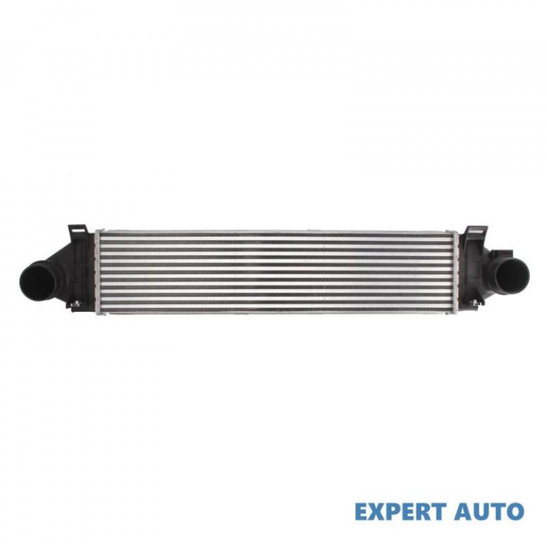 Radiator intercooler Land Rover Range Rover Evoque (06.2011->)[L538] #4 1382884