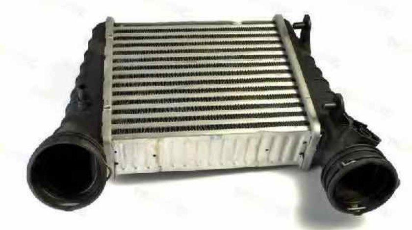 Radiator intercooler VW PASSAT 3B3 Producator THERMOTEC DAW004TT