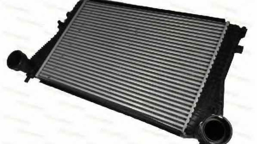 Radiator intercooler VW PASSAT CC 357 Producator THERMOTEC DAW005TT