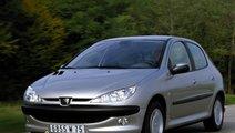 REPARAM PUNTI SPATE LA GAMA DE AUTO PEUGEOT 206
