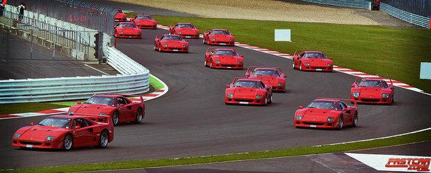 Reuniune de familie: Peste 50 de Ferrari F40 si-au dat intalnire la Silverstone