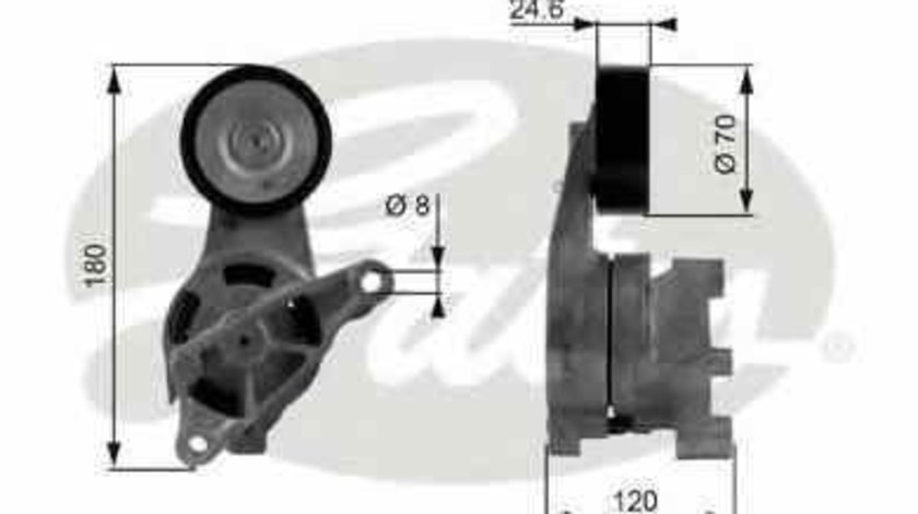 rola intinzator curea alternator VW GOLF PLUS (5M1, 521) GATES T38438