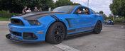 S-a facut dreptate! Politia americana a arestat in sfarsit un Mustang!