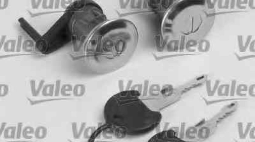Set cilindru inchidere PEUGEOT 206 Van Producator AKUSAN LCCF01254