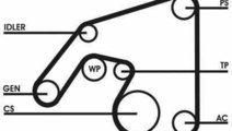 Set curea transmisie cu caneluri MERCEDES-BENZ SL ...