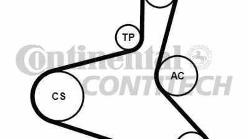 Set curea transmisie cu caneluri VW GOLF IV 1J1 CONTITECH 6DPK1195K2