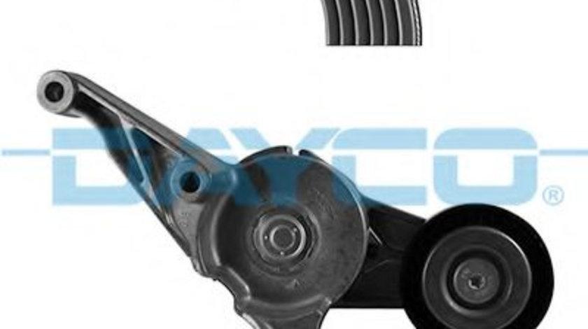 Set curea transmisie cu caneluri VW SHARAN (7M8, 7M9, 7M6) (1995 - 2010) DAYCO KPV250 piesa NOUA