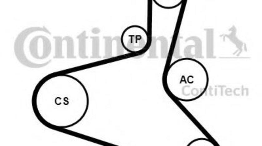 Set curea transmisie cu caneluri VW SHARAN (7M8, 7M9, 7M6) (1995 - 2010) CONTITECH 6DPK1195K2 piesa NOUA