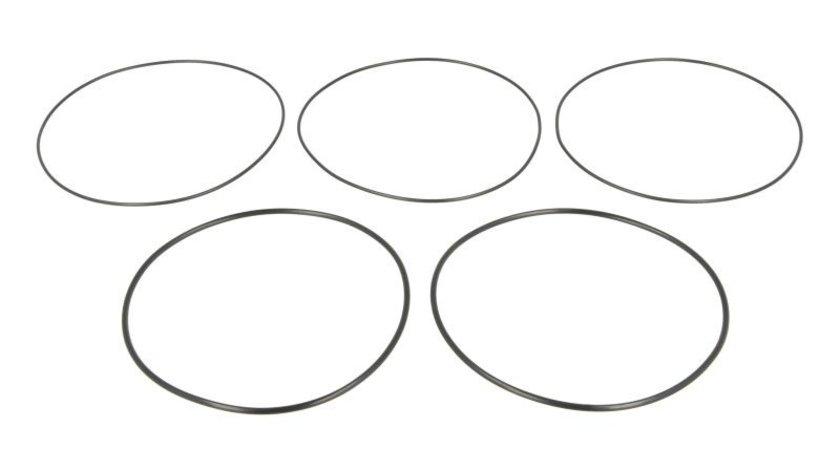 Set garnituri, bucsa cilindru SAME TITAN ENGITECH ENT020154