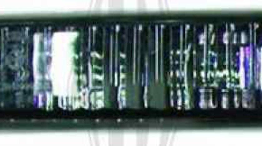 Set lumini semnalizare BMW 3 cupe E46 DIEDERICHS 1214279