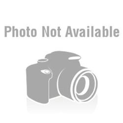 Set placute frana fata Ford Explorer / Mercury / Ranger / Mazda b2500 An 1995-2002 cod RAYBESTOS SGD652M