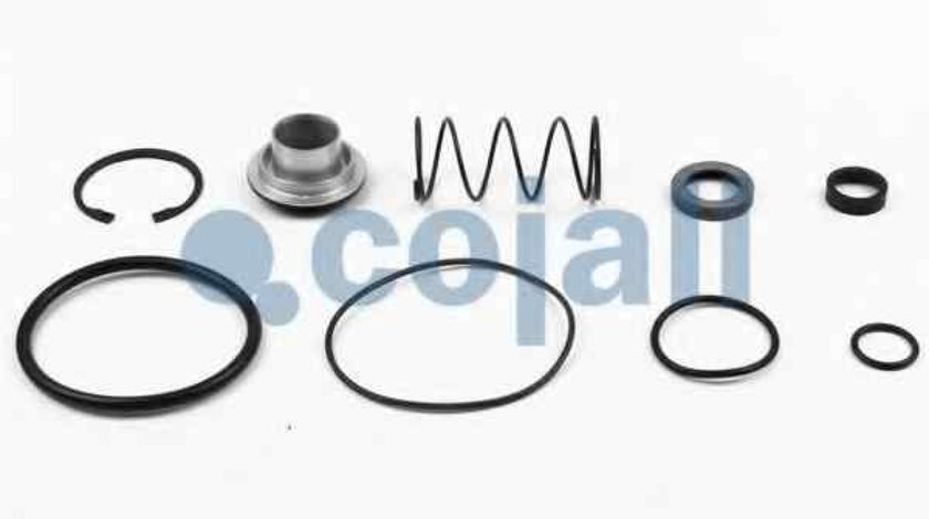 Set reparatie Supapa releu MERCEDES-BENZ MK COJALI 6012156