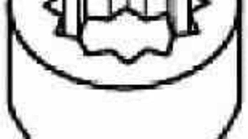 Set surub, chiulasa AUDI A4 (8E2, B6) PAYEN HBS300