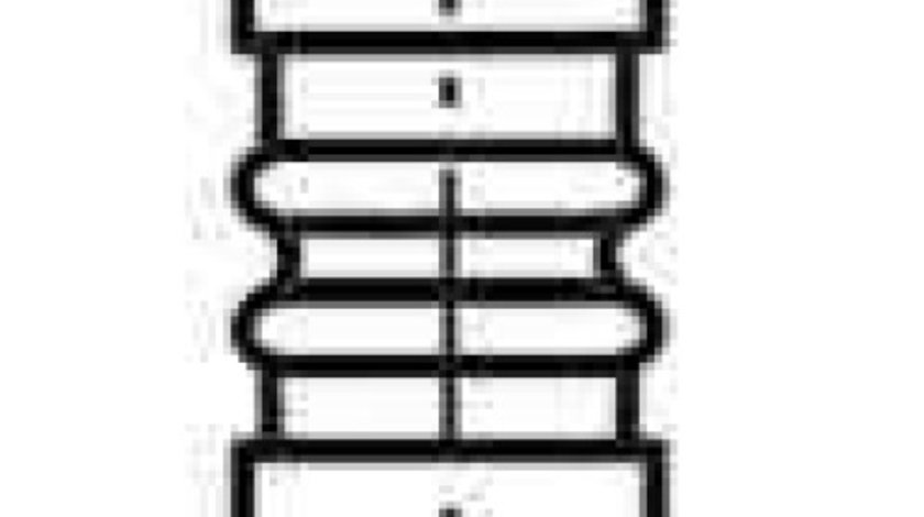 Supapa evacuare MERCEDES-BENZ CLA cupe (C117) FRECCIA R6186/BM