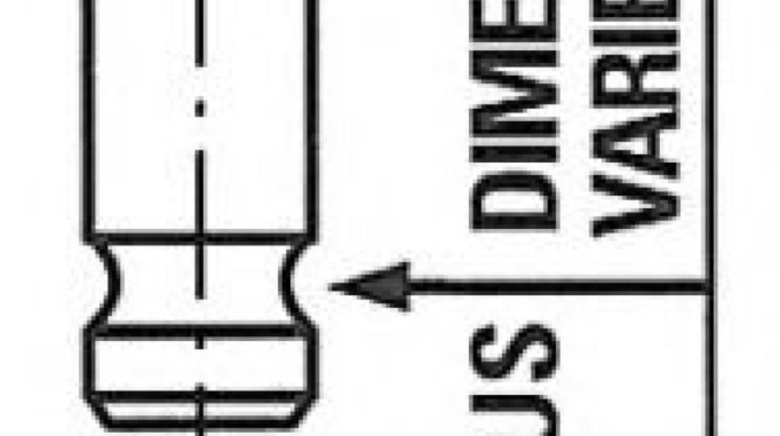 Supapa evacuare NISSAN PATHFINDER III (R51) (2005 - 2012) FRECCIA R6285/RNT - produs NOU