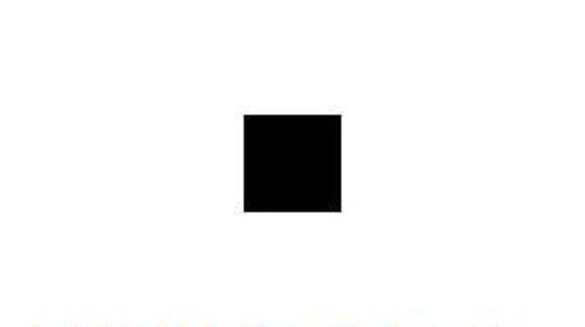 Supapa unidirectionala Skoda Fabia 2 (2006->)[542] #2 03F103175A