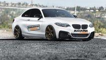 SUSPENSIE SPORT REGLABILA BMW SERIA 1 F20 / F21 - ...