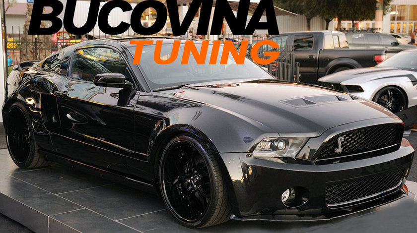 Suspensie Sport Reglabila Ford Mustang Coupe/Cabrio (05-14)