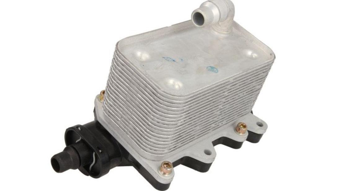 Termoflot radiator ulei (81x72x143) BMW Seria 5 (E60), 5 (E61), 6 (E63), 6 (E64), 7 (E65, E66, E67), X3 (E83) 2.0 d-4.4D intre 2002-2010
