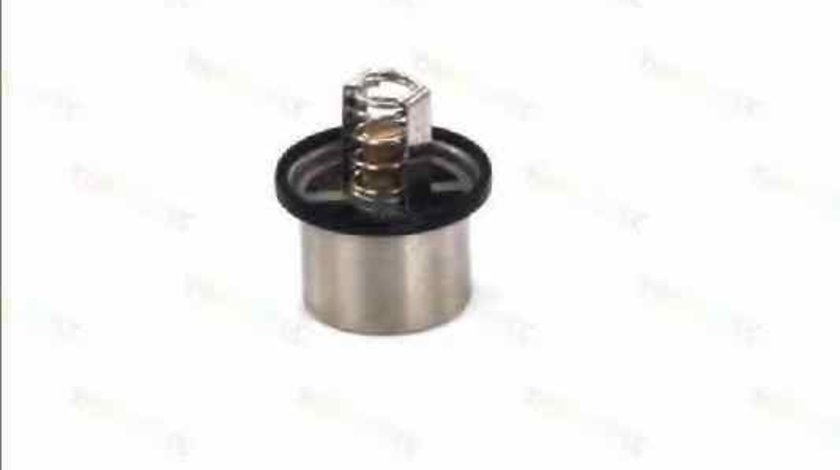 Termostat BMW 5 Touring E34 Producator THERMOTEC D2DA001TT