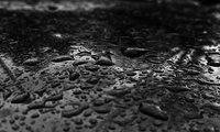 Click image for larger version  Name:raindrops.jpg Views:31 Size:2.89 MB ID:2025476