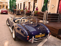 Click image for larger version  Name:Cobra 5.jpg Views:83 Size:1.22 MB ID:1027123