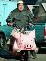 Click image for larger version  Name:Pig Vespa Art Bike.jpg Views:227 Size:19.8 KB ID:906752
