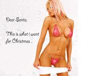 Click image for larger version  Name:dear santa.jpg Views:470 Size:333.2 KB ID:414079