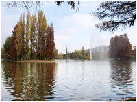 Click image for larger version  Name:Autumn glow.jpg Views:69 Size:1.51 MB ID:1210292