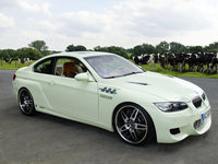 Click image for larger version  Name:ac-schnitzer-gp310-01.jpg Views:118 Size:157.4 KB ID:1746276