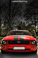 Click image for larger version  Name:Mustang front.jpg Views:107 Size:185.5 KB ID:889771